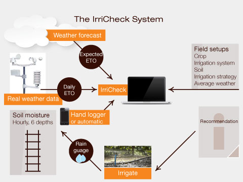 The Irricheck System 14Oct2012