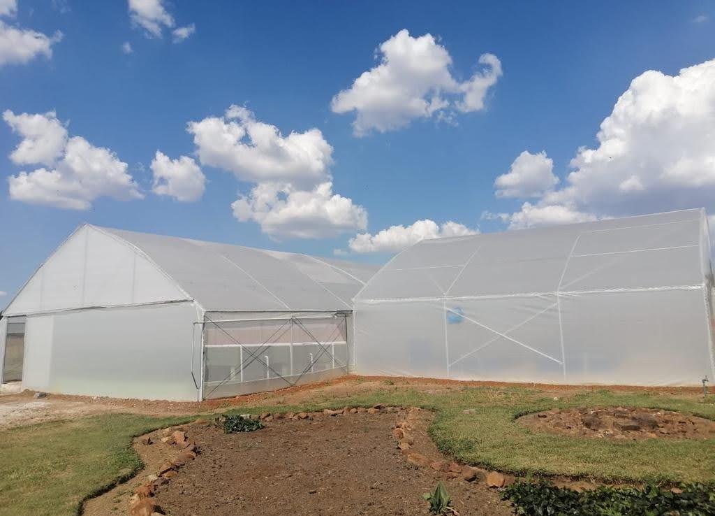SA's first aquaponics social enterprise to promote climate-smart food production
